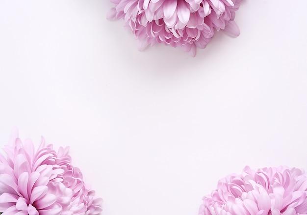 白い背景の上の花の花束 無料写真