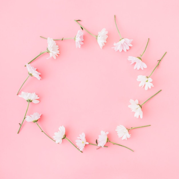 Flowers forming circle on pink background photo free download flowers forming circle on pink background free photo mightylinksfo