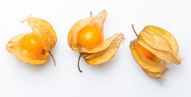 Flowers and fruits of fisalis (physalis peruviana) isolated viewed from above. Premium Photo