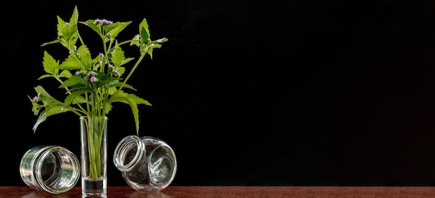 小さなガラスの花瓶の花 Premium写真