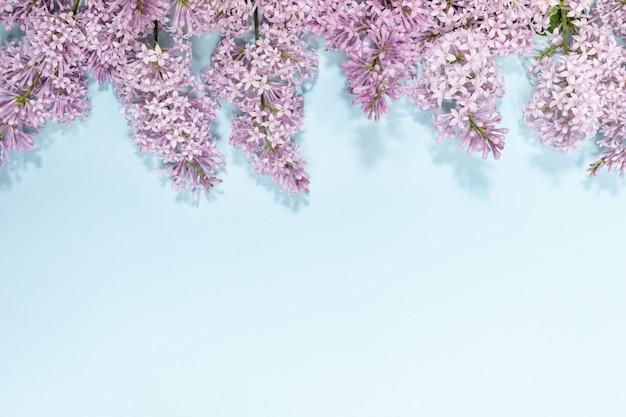 Цветки сирени на вершине светло голубой фон с копией пространства. Premium Фотографии