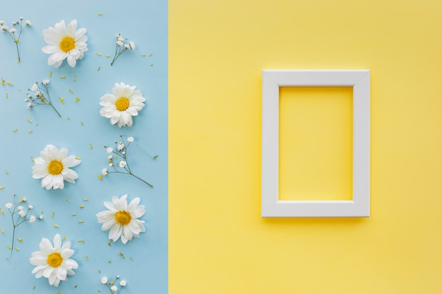 Flowers; petal and pollen with white blank picture frame on dual backdrop Free Photo