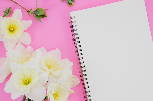 Flowers with a notebook Free Photo