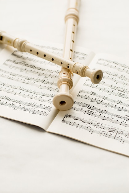 Flutes over musical notes Free Photo