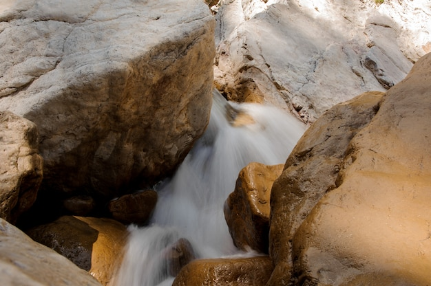 Foamed water running between stones in canyon Premium Photo
