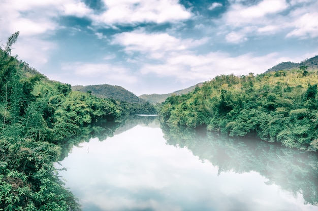 Fog on the river the environment and rainforest Premium Photo