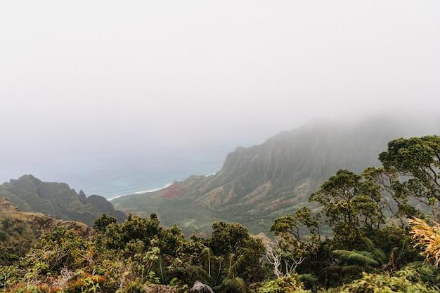Туманный государственный парк коки на гавайях, сша Бесплатные Фотографии