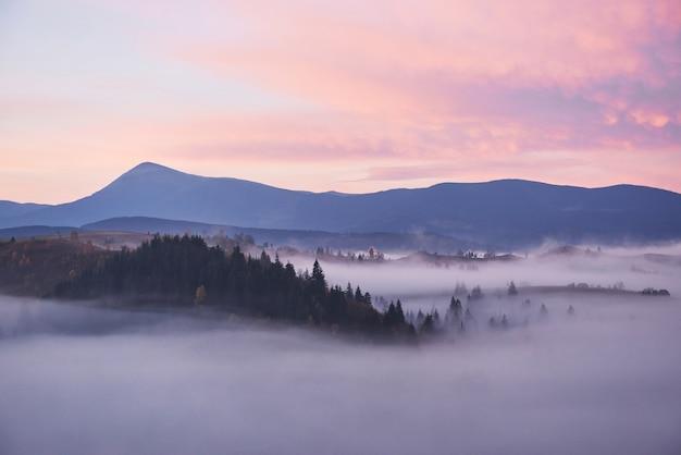 秋の季節のウクライナのカルパティア山脈の霧の朝。 無料写真