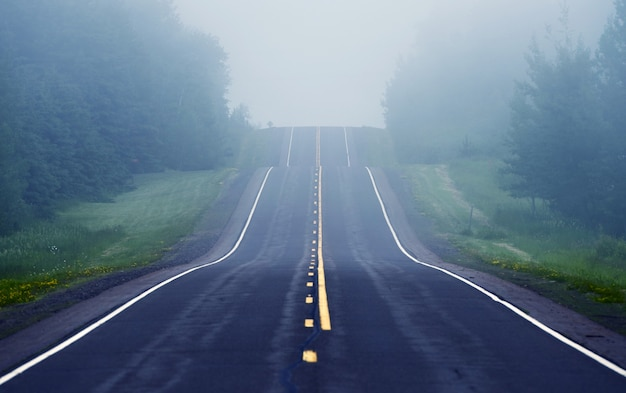 Foggy road ahead Free Photo