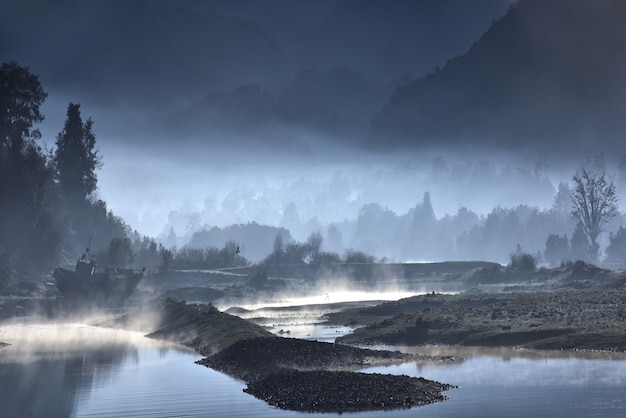 Sponda nebbiosa di un lago con foreste di notte Foto Gratuite