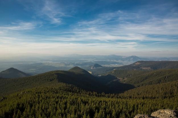 山の霧の夏の朝。カルパティア、ウクライナ、ヨーロッパ。美容の世界。 無料写真