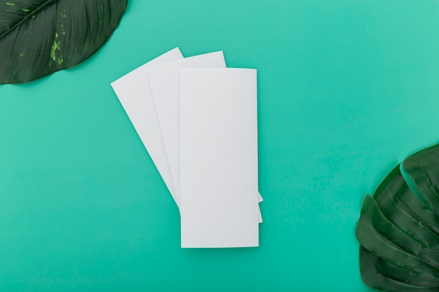 Folded brochures with leaves on desk Free Photo