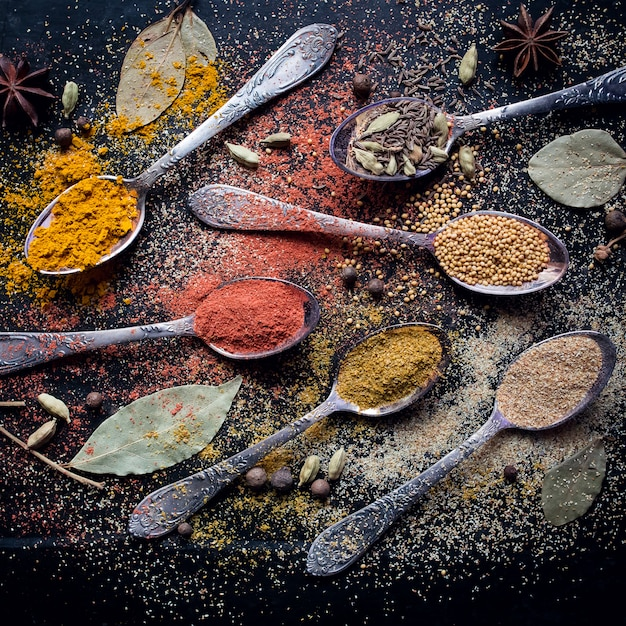 Food spice ingredients for cooking dark background Premium Photo