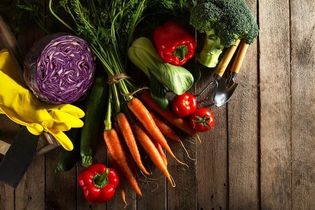 Food Vegetable Colorful Background. Tasty Fresh Vegetables ...