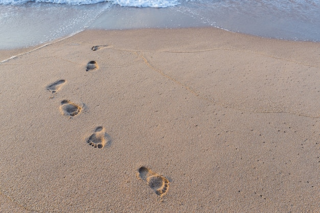 Foot print in the sand at the beach background Premium Photo