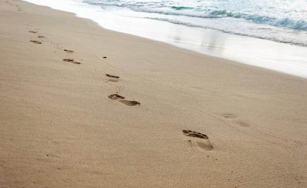Ноги ступают на песок. расслабляющая прогулка по пляжу у океана Premium Фотографии