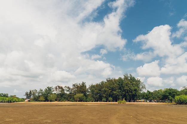 緑の山、footの背景と雲のマングローブ林の雲空と干潮の風景。 Premium写真