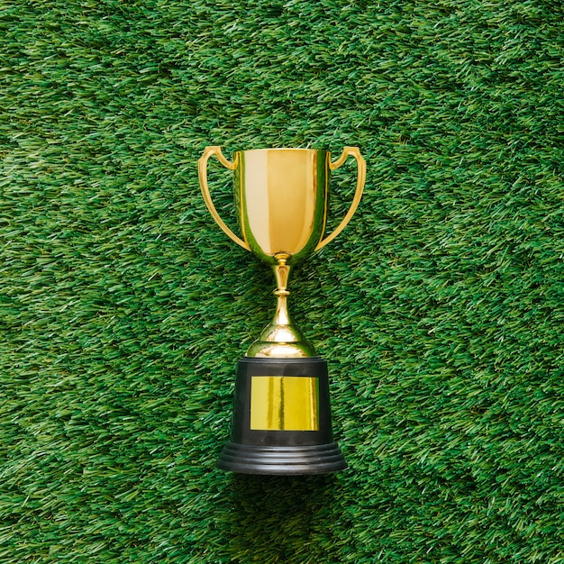 Football background on grass with trophy Free Photo