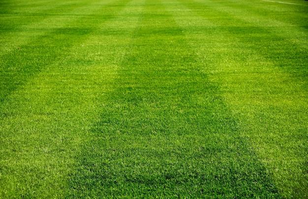 Football field Premium Photo