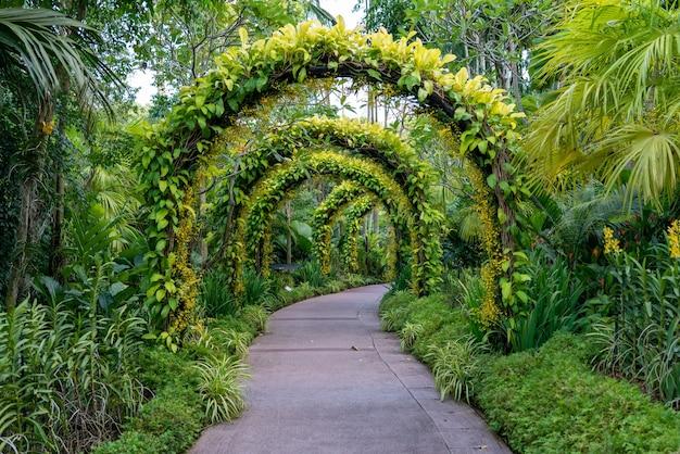 꽃과 식물의 아름다운 아치 아래 보도. 무료 사진