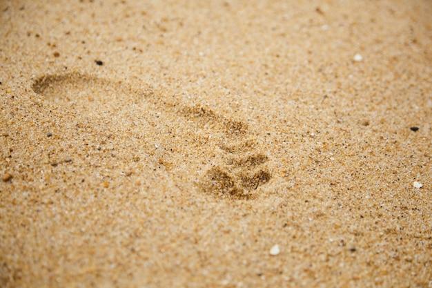 След босых ног на мокром песке деталь Premium Фотографии
