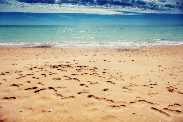 ビーチの砂の上の足跡 Premium写真