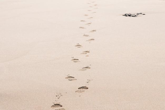 晴れた日に砂漠の砂の上の男の足跡 無料写真