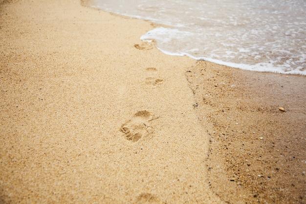 濡れた砂のビーチで素足の足跡。海岸沿いを歩く。コンセプト:観光危機 Premium写真