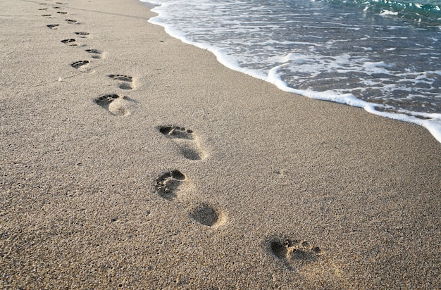 Footprints in the sand near the sea waves Premium Photo