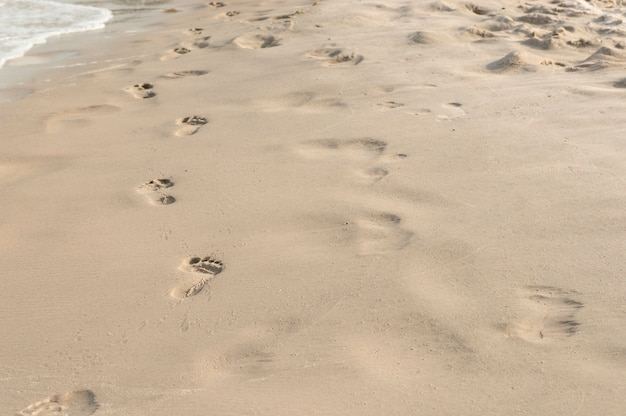 Footprints in the sand at sunset Premium Photo