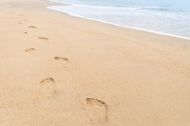 Footprints walking on the beach and waves Premium Photo