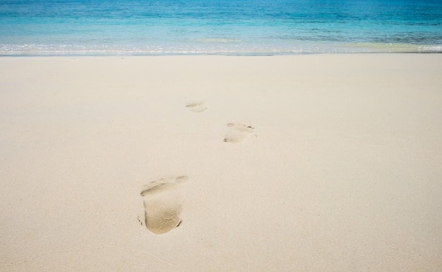 Footsteps on coral sandy beach, summer Premium Photo