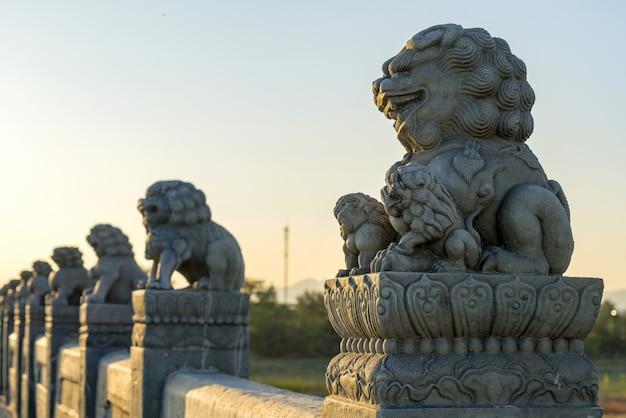 Forbidden city lions Premium Photo