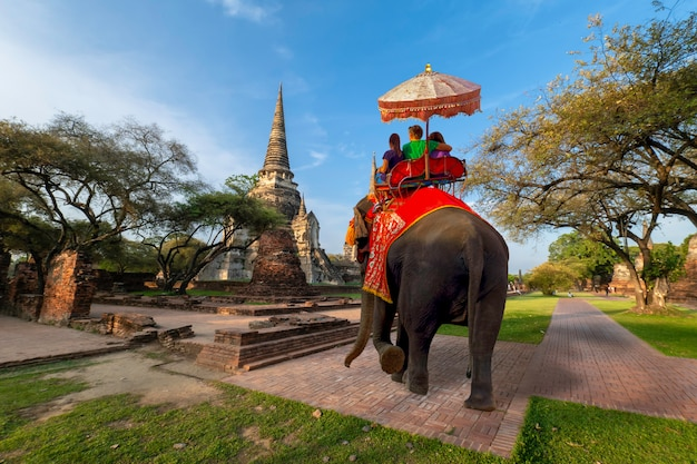 Foreign tourists elephant ride to visit ayutthaya Premium Photo