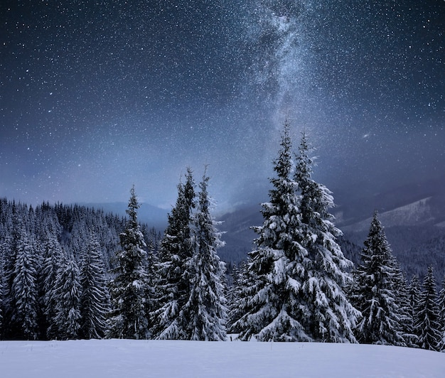 Forest on a mountain ridge covered with snow. milky way in a starry sky. christmas winter night Free Photo