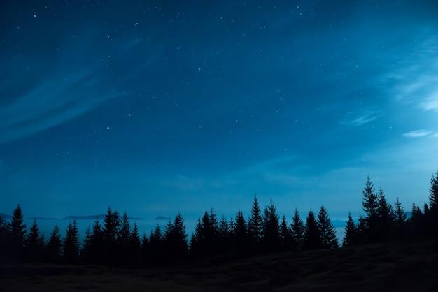 많은 별과 달과 푸른 어두운 밤하늘 아래 소나무 숲 프리미엄 사진