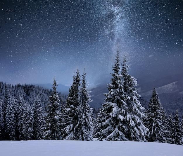 산 능선에 숲이 눈으로 덮여 있습니다. 별이 빛나는 하늘에서 은하수. 크리스마스 겨울 밤 무료 사진