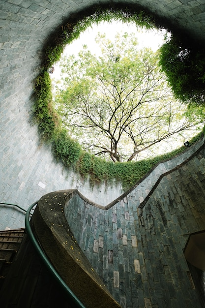 Fort canning in singapore Free Photo