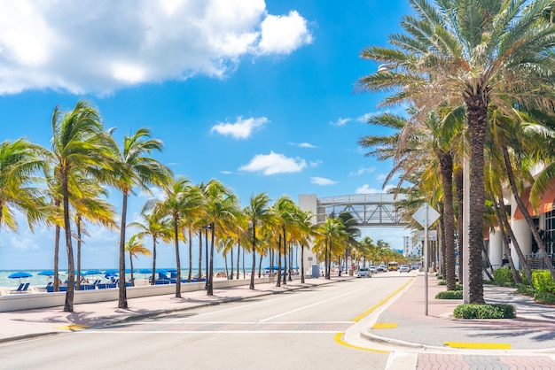 fort lauderdale beach promenade with palm trees 130111 1016