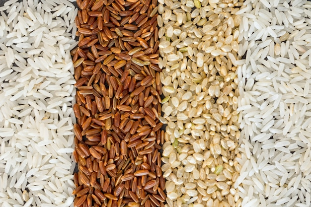 Four different types of rice background Free Photo