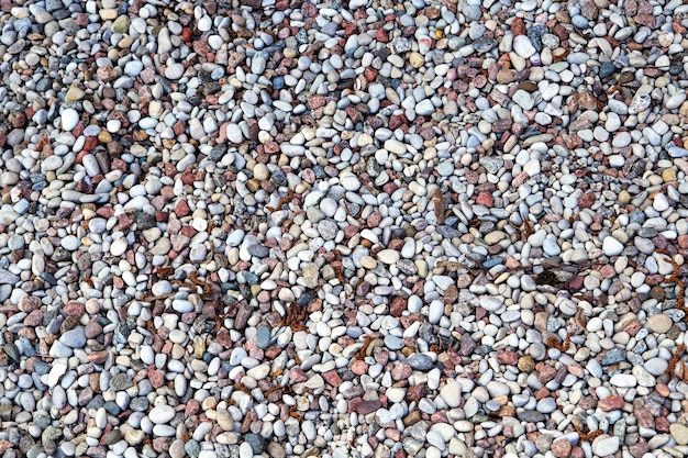 Fragment of the beach with lots of pebbles Premium Photo