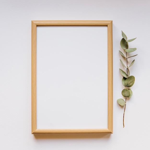 Frame next to branch Free Photo
