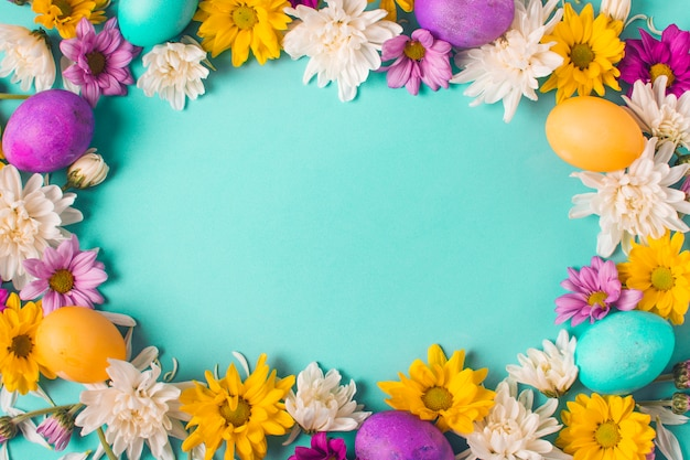 Frame of bright eggs and flower buds Free Photo