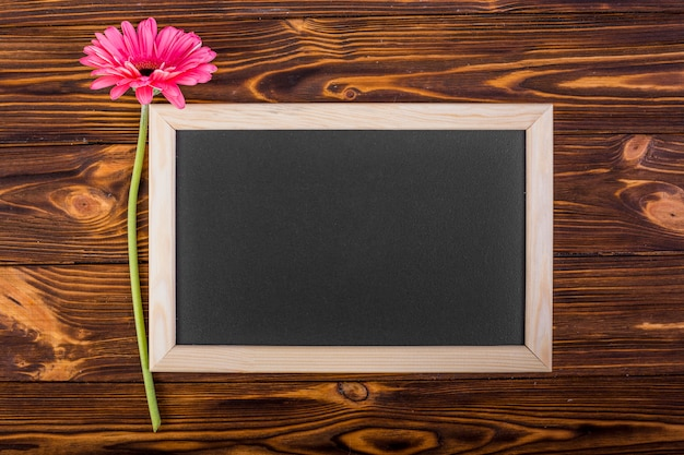 Frame chalkboard with pink gerbera Free Photo