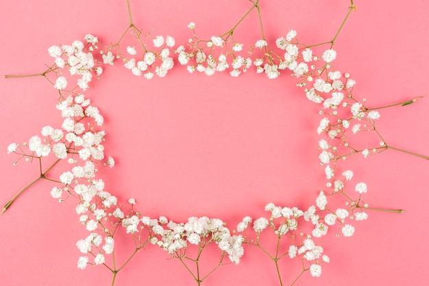 Frame made from white gypsophila on peach background Free Photo