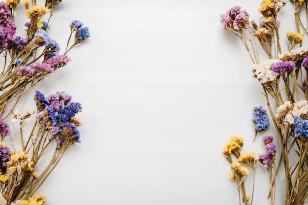Рамка из засушенных цветных цветов на белом Premium Фотографии