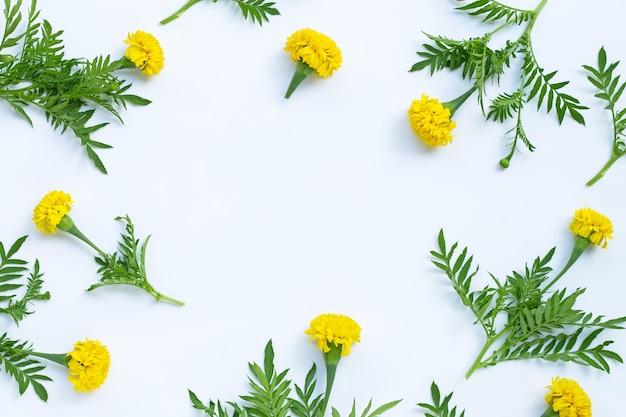 マリーゴールドの花で作られたフレーム。 Premium写真