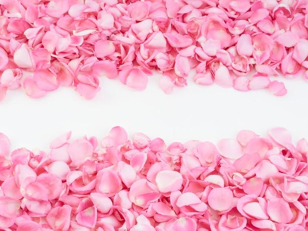 Frame made of pink rose petals Premium Photo