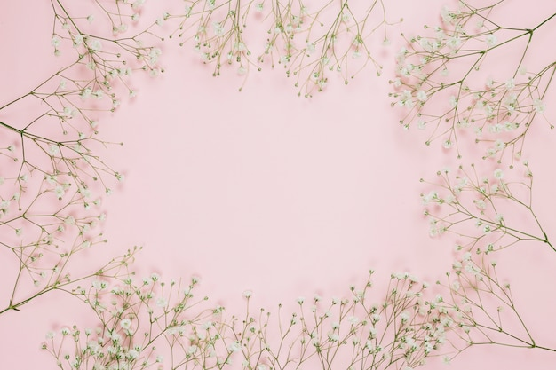 Frame made with gypsophila or baby's-breath flowers on pink background Free Photo