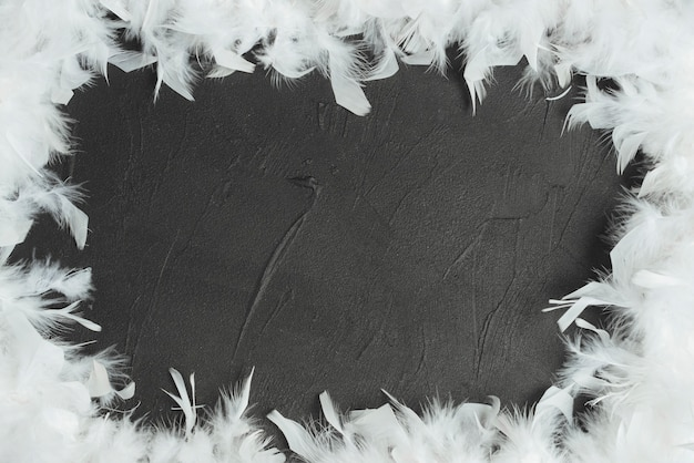 Frame made with white feathers Free Photo